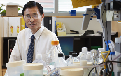Huakun Xu, Director of the Biomaterials and Tissue Engineering Department