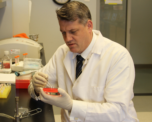 Professor Mark Shirtliff, PhD, is shown in his lab in the Department of Microbial Pathogenesis at the University of Maryland School of Dentistry. The researcher and entrepreneur held a primary appointment at UMSOD and a secondary appointment in the Department of Microbiology and Immunology at the University of Maryland School of Medicine until his tragic death in July 2018.