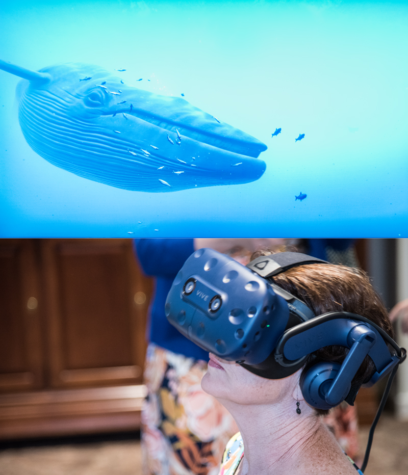 Renee Gruel, CRNP, experiences a marine setting that features a whale during a virtual reality demonstration conducted by members of the laboratory of Luana Colloca, MD, PhD, MS, associate professor at the schools of nursing and medicine.